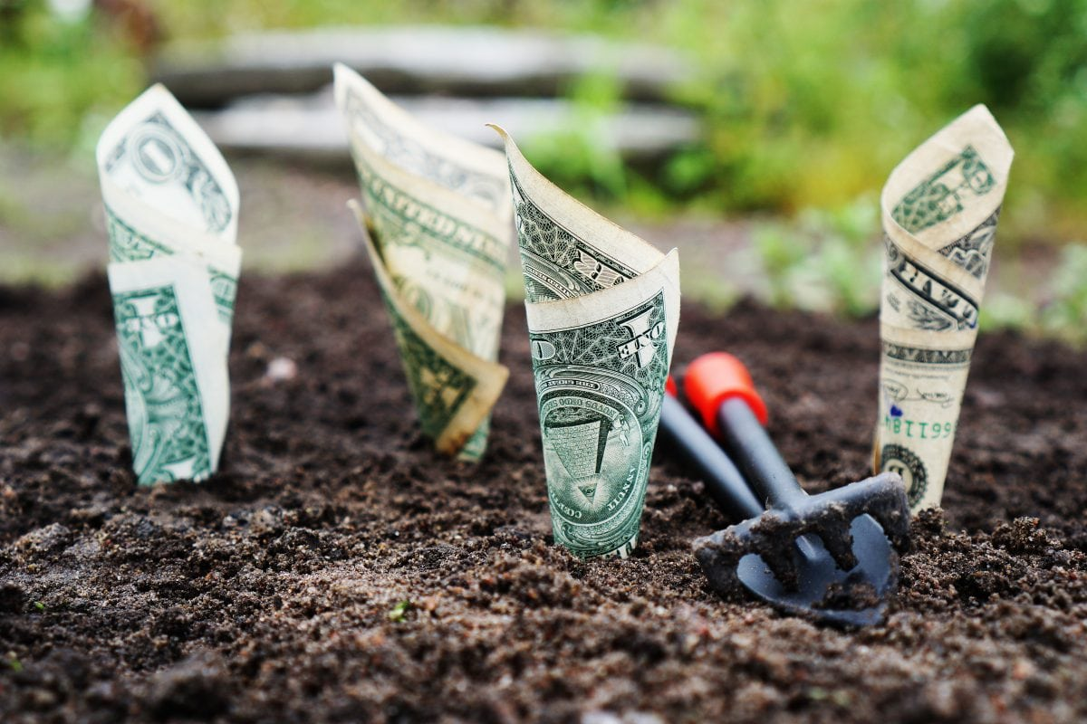 Planting the Seeds for Financial Success